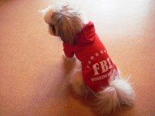 Теплые толстовки в спортивном стиле для мелких декоративных собак.