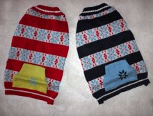 Модный свитер для француза, крупного мопса.