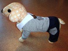 Костюм трикотажный с джинсами, для мелких собак. Цена 980 руб.