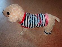 Трикотажный летний костюмчик для мелких собак. Есть еще в красном цвете. Цена 870 руб.