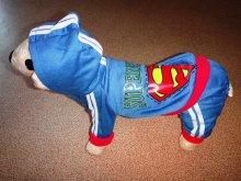 Тёплый трикотажный костюмчик для декоративных собак. Подходит худеньким! Цена 935 руб.